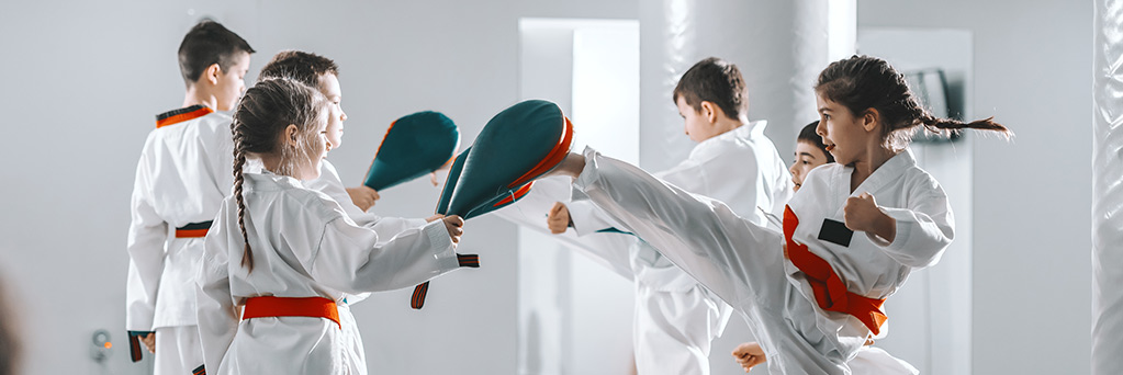 https://www.sportsengine.com/ui_themes/assets/latest/images/portal/banners/taekwondo-1.jpg