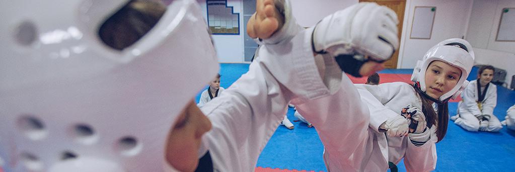 https://www.sportsengine.com/ui_themes/assets/latest/images/portal/banners/taekwondo-3.jpg